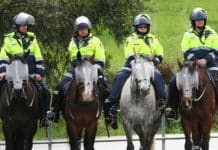 Mounted police officers on standby at a peaceful demonstration at Hazelwood Power Station, Victoria. Photo: Simpsons fan 66/Wikimedia Commons, CC BY-SA 3.0